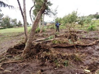 Chalice disaster relief - flooding damage in Kenya
